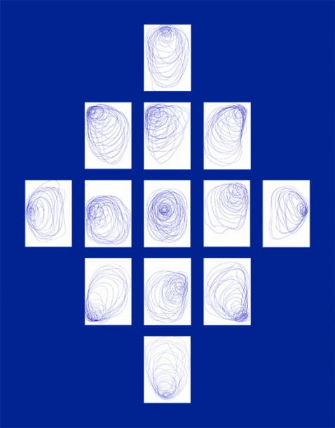 Larvae (13 blue drawings), 2016